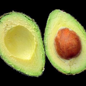 avocado-937459